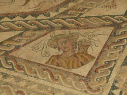 Quintanilla de la Cueza. La Tejada. Mosaico da primavera