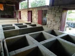 Antiga fábrica de curtidos da familia Nogueiras