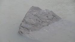 Petroglifo no encoro de Vilasouto
