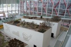 Burgos. Museo de la Evolución Humana