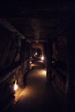 Galería dunha mina de Puras de Villafranca