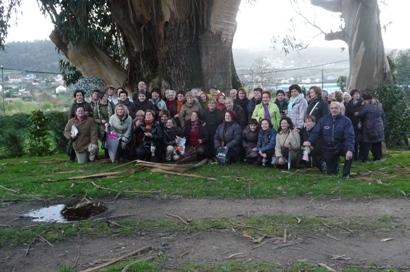 O grupo diante do colosal eucalipto do pazo de Rubiáns